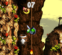 Kong-Fused Cliffs Bonus Level 1.png