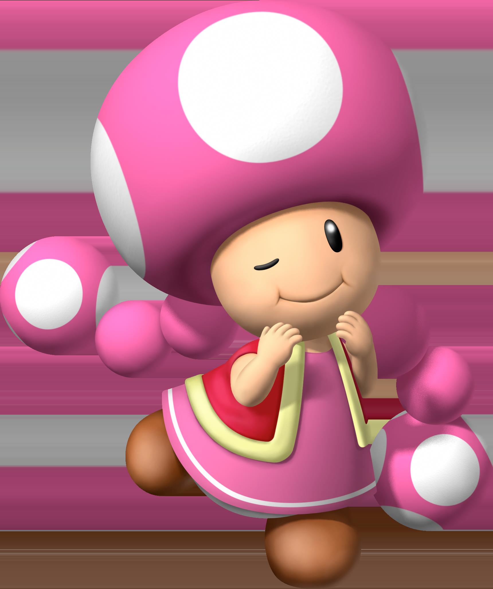 Toadette dans Mario bros Toadette111