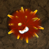 SMG2 Land Urchin.png
