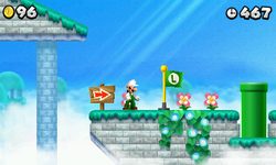 NSMB2 World 5-3.PNG