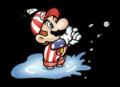 Mario Water NES.png