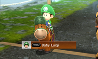 Baby Luigi Horse Pro-MSS.png