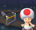 MKT Icon GhostValley1RSNES Toad.png