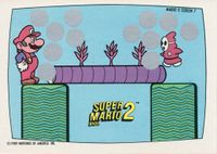 Nintendo Game Pack SMB2 Scratch-off card 7.jpg