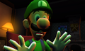 Luigi says no.png