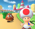 MKT Icon MarioCircuitR3DS Toad.png