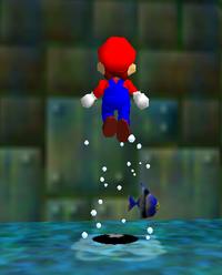 Easter egg - Super Mario Wiki, the Mario encyclopedia