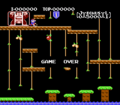 Donkey Kong Jr. NES Game Over.png