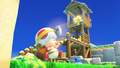 Captain Toad field.png