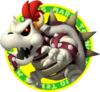 DryBowserMTO.png