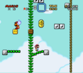 Gnarly SMW.png