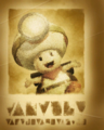 CTTT Poster Captain Toad.png