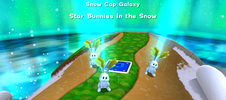 Star Bunnies in the Snow.png