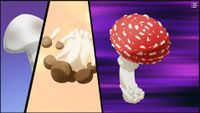 Stone World Mushrooms.jpg