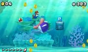 Cheep Chomp - Super Mario Wiki, the Mario encyclopedia
