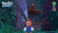 SMO Wooded Moon 11.png