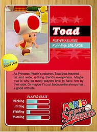 Level1 Toad Back.jpg
