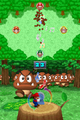 Call of the Goomba MPDS.png