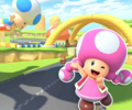 MKT Icon ToadCircuitR3DS Toadette.png