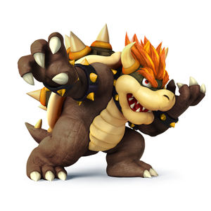 Cat Bowser Pictures