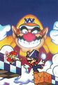 Mario and Wario main artwork.jpg