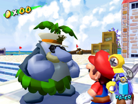 Pianta Captain Super Mario Wiki The Mario Encyclopedia