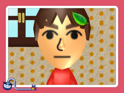 WWG Tomodachi Life.png