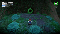SMO Wooded Moon 35.png