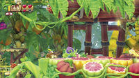 Various containers in Donkey Kong Country: Tropical Freeze