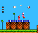 SMB2 Key Killing Birdo Glitch.png