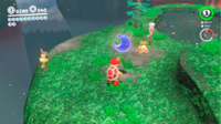 SMO Wooded Moon 64.png