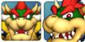 Bowser Mugshots MP4.png