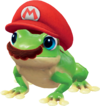 SMO Frog Capture.png