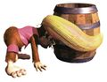 Dixie&Barrel DKC2.jpg