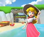 MKT Icon KoopaTroopaBeachN64 PeachVacation.png