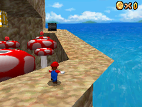 SM64DS Tall Tall Mountain Star 1.png