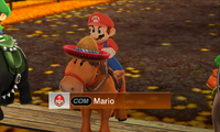 Mario Horse Advanced-MSS.png