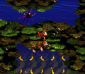 Coral Capers DKC hidden area.png