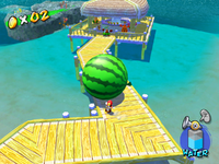 The Watermelon Festival.png
