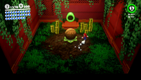 Treasure Nut Room SMO.png