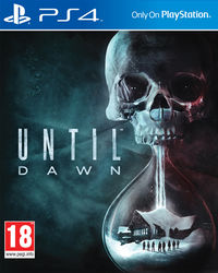 UntilDawn Boxart.jpg