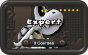 NSMBU Expert Pack Icon.png