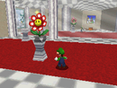 SM64DS Mirror Room.png