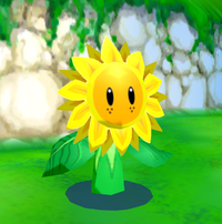 SunflowerkidSMS.png