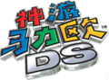 SM64DS China.png